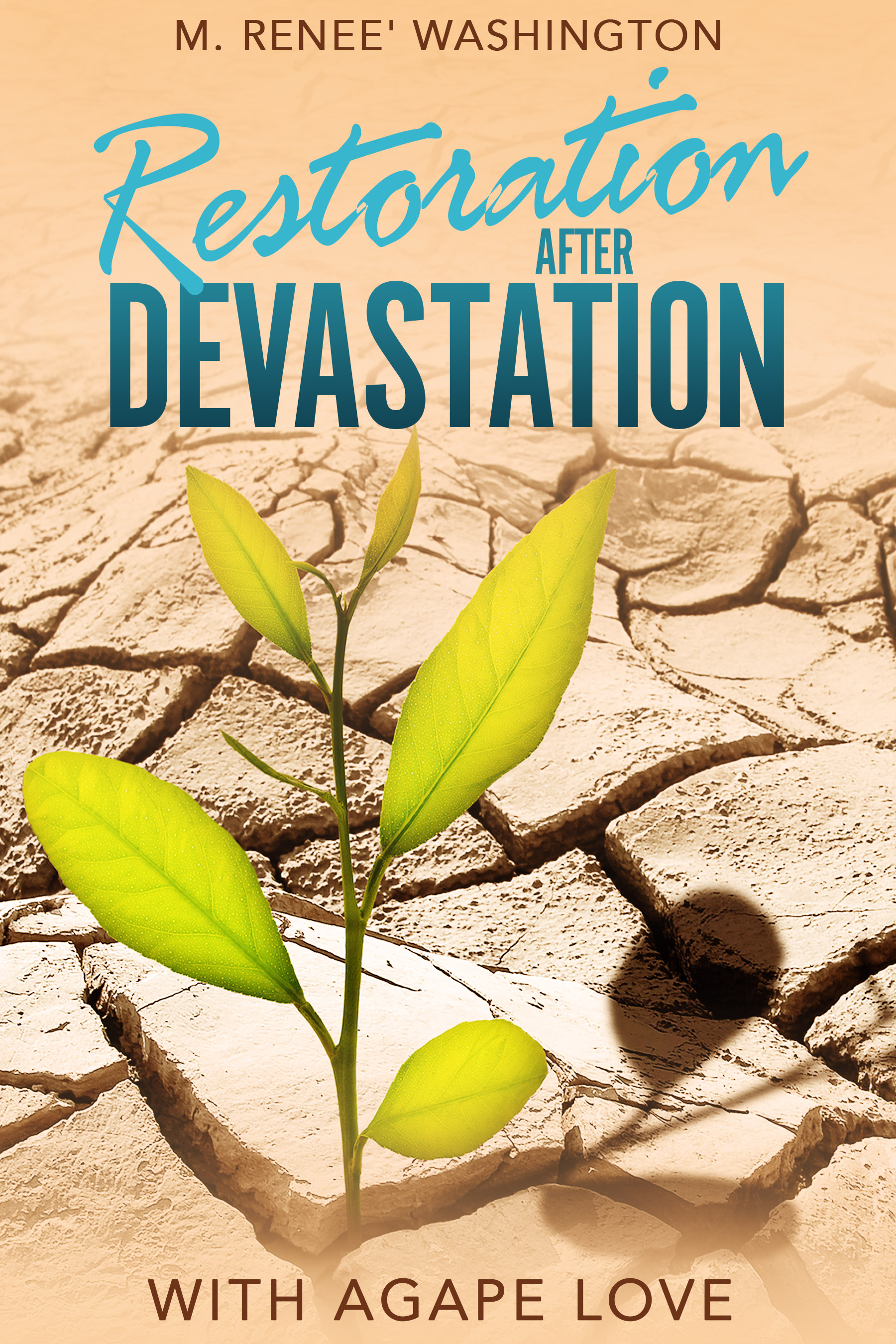 Restoration After Devastation with Agape Love